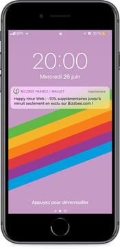 Notification push Bizzbee pour les soldes 2019 - campagne sur wallet mobile